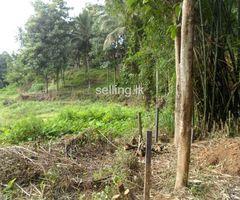 land in pilimathalawa