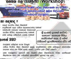 Workshop- Import Export & Cargo Handling Procedures