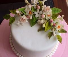 Dahamsi Cake & Baking