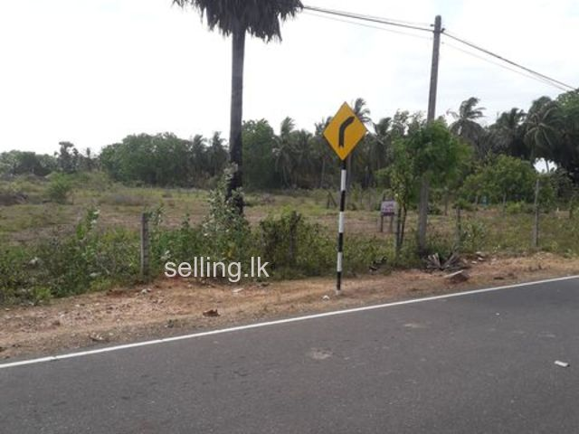 02 Acres 57 Perches land for sale in Batticalao  urgently ( Total 373 perches)
