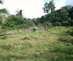 14 perches Land for sale - Near Henegama town