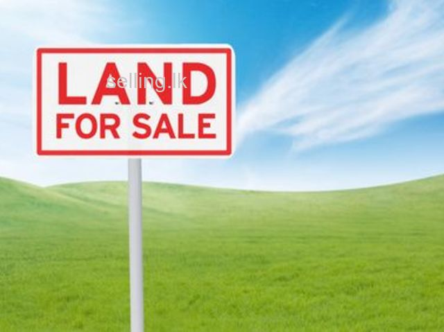 Residential Land For Sale in Pannipitiya-15P
