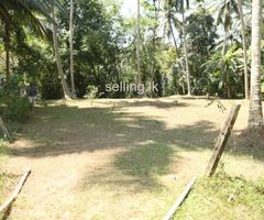 Land for sale at Plnnawala Kegalle