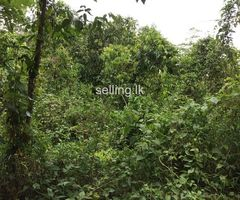 Land for sale in Galle- karandeniya