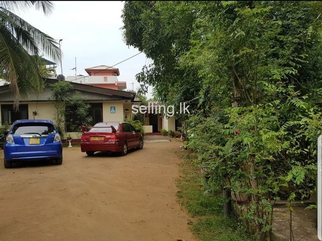 Land with two houses in hendala for sale