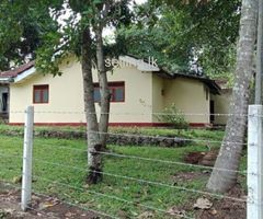 House for Rent in ibbagamuwa