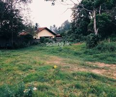 Kuliyapitiya land for sale