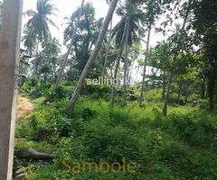 LAND FOR URGENT SALE 1.4KM TO WELIPENNA EXPRESSWAY ENTRANCE