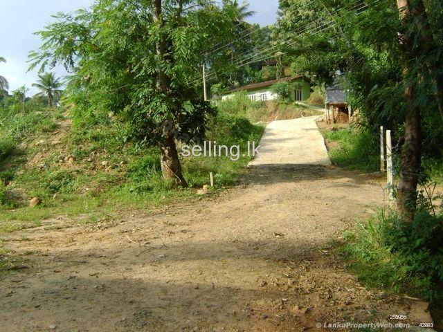 A land for sale in Medamahanuwara