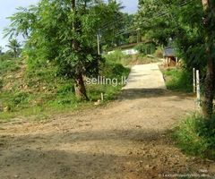 A land for sale in Medamahanuwara