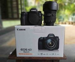 Canon EOS 6D Mark II with EF 24-105 f/4L IS II USM