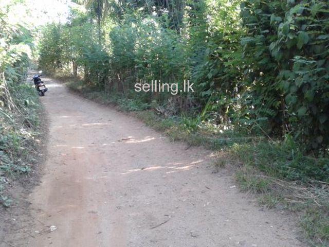 Land for sale in matihakka Kaikawala Matale