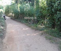 Land for sale in matihakka Kaikawala Matale