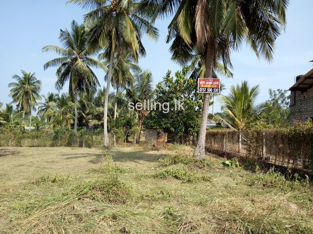 20 perch Land for Sale in Pannala Elabadagama