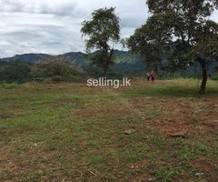 residential Land for sale in galle hapugala