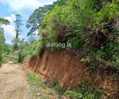 2 Acres Agriculture Land sale in Kalugala Rd, Badureliya