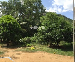 House for sale in lbbagamuwa