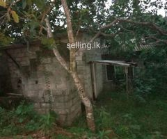 Land for sale in nittabuwa pasyala ellakkala