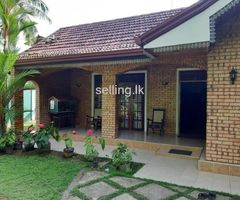 house for rent in Hikkaduwa