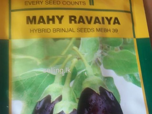 Hybrid fruit and vegetables seed import