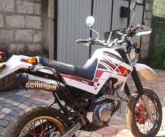 Serow 2008