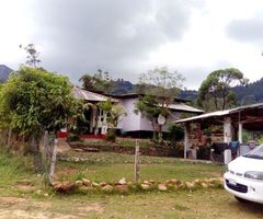 KANDY HOUSE FOR SALE