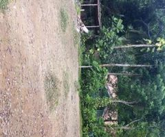 Bare Land for sale in Thihagoda