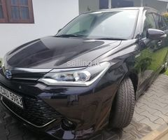 Toyota Axio  WBX