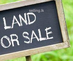 Land for Sale at Katubedda, Moratuwa