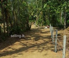 Land for sale in Polgasowita