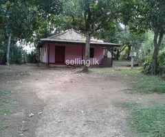 Mathara kakunadura land for sale