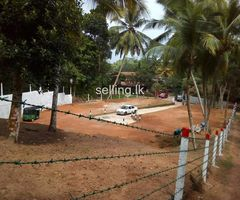 Thalagaha - Wijayananda Mawatha land for sale