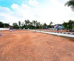 Land in kotte