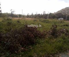 Padukka land for sale