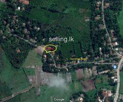 Land for sale at Gonapinuwala
