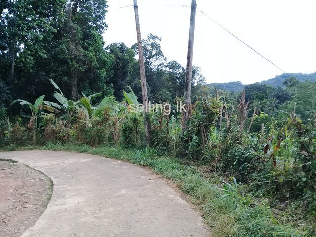 Land for sale in Kadigamuwa
