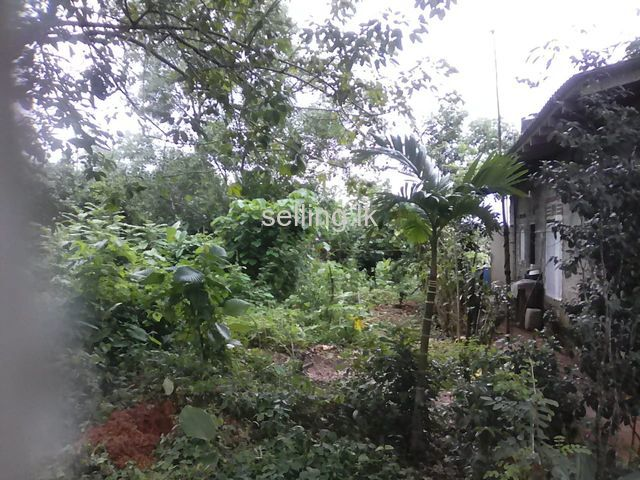 Bare land for sale in kaluthara