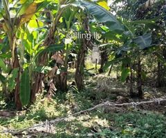 Land for Sale at Piliyandala (Kasbaawa)