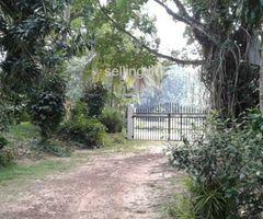 Land for Sale Kiriwattuduwa