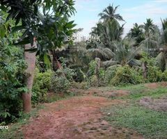 Land for sale in mirissa