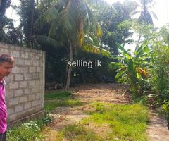 Land for Sale in Papiliyana