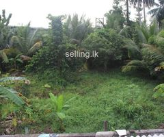 Residential Land For Sale In Panadura