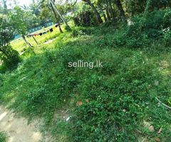 Land for sale in Padukka, Angampitiya