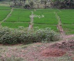 Land For sale in Galle Batuwanthudawa