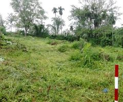Land for Sale in Kuruwita Paradise