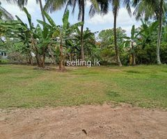 Land for Sale in Gothatuwa