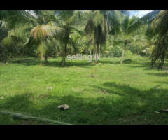 Land for sale in Beliatta!!
