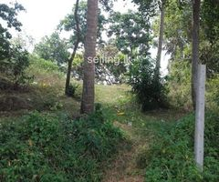 Close to Matara town is an excellent investment opportunity