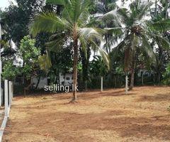 10  Perches Bare Land For Sale Pamunuwila ,gonawala, Kiribathgoda