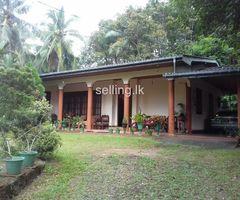 පාදුක්ක,මලගල පර් 415 ඉඩමක් විකිණීමට/Land for sale in Padukka-Malagala